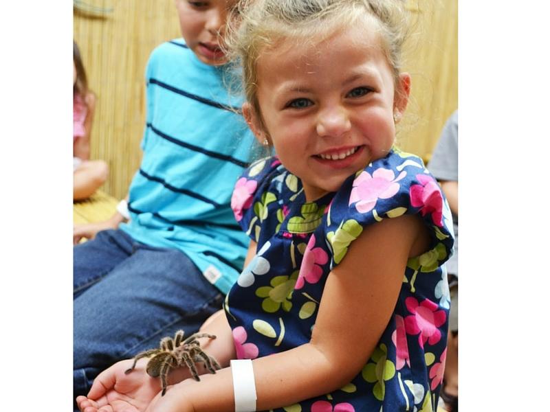 Girl with tarantula
